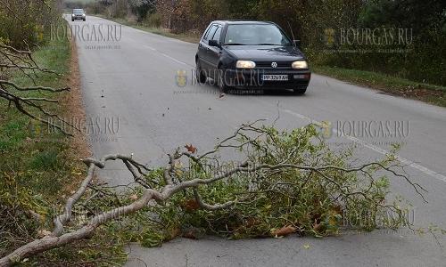 14 ноября 2016 года, Болгария, ураганный ветер по всей стране натворил не мало бед