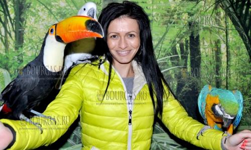 14 ноября 2016 года, Хасково, Лилия и Христо Колевы в зале дома культуры Заря представят экзотические виды птиц, которые сами разводят