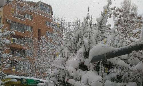 29 ноября, София, квартал Редута, первый снег в этом году выпал сразу в больших количествах