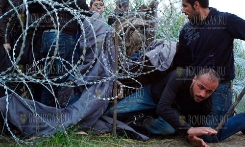 Болгария потратила на охрану границы с Турцией >250 млн. лев