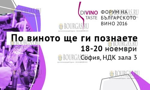 София стала столицей болгарского вина - DiVino.Taste