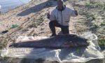 В Болгарии рыбак поймал сома монстра