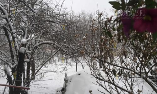 13 декабря, сегодня до обеда Северные и горные районы Болгарии серьезно припорошило снегом, снегопад в Болгарии