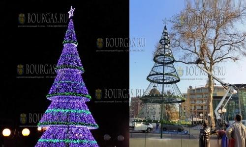 5 декабря, Поморие, Рождественская елка в этом году 13 метров в высоту