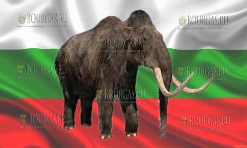 Мамонты на территории Болгарии жили миллионы лет назад
