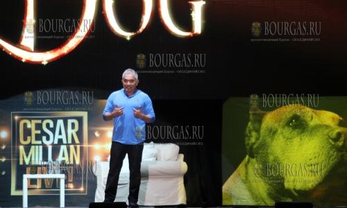 24 марта 2017 года, София, профессиональный тренер собак - Сизар Миллан, представил забавную программу о собаках