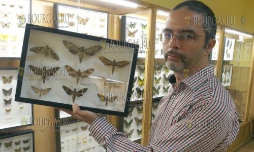 6 марта 2017 года, Музей естествознания в Пловдиве, открылась выставка насекомых