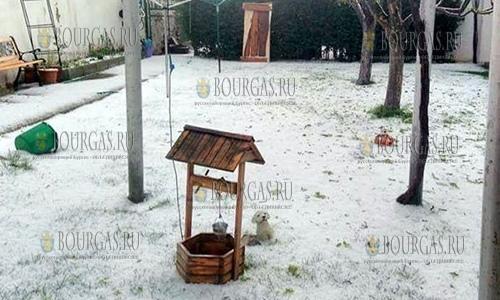 18 апреля 2017 года, карловские села Горни Домлян, Бегунци и Ведраре остались без фруктов - град поработал