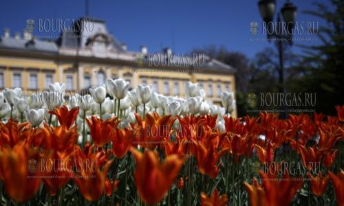 27 апреля 2017 года, вид на Городской сад в Софии у бывшего княжеского дворца