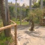В Софийском зоопарке хищники получили новое жилье