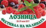 Фестиваль малины в Лознице стартовал сегодня