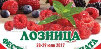 Фестиваль малины в Лознице