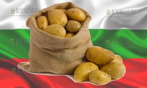 Цены на картофель в Болгарии вырастут