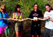 в Бургасской области обнаружили змею, длина которой составила 203 см