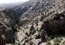 Болгарские ученые совместно с испанскими коллегами - нашли в пещере у подножия горного хребта Койтендаг в Туркменистане неизвестное науке насекомое