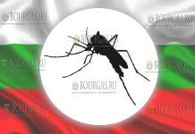 тигровые комары в Болгарии