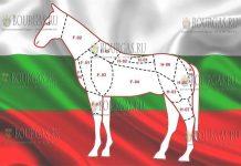 экспорт конины из Болгарии