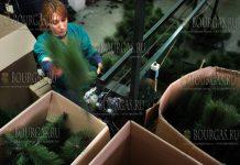 болгарская компания компания Грипс–ПВЦ производит искусственные елки