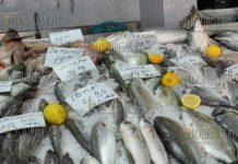 рыба на базаре Краснодар в Бургасе