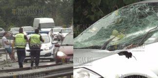 Во время бури в Бургасе на движущийся авто упало дерево