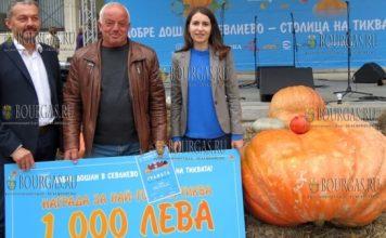 тыквенный фестиваль в городе Севлиево