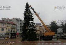 21-го ноября в центре болгарского городка Казанлык установлена настоящая Рождественская ель