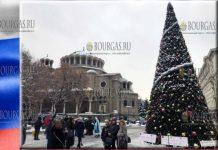 Правительство Москвы подарило Софии 13-ю Рождественскую ель