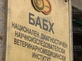 Агентство по безопасности пищевых продуктов в Болгарии