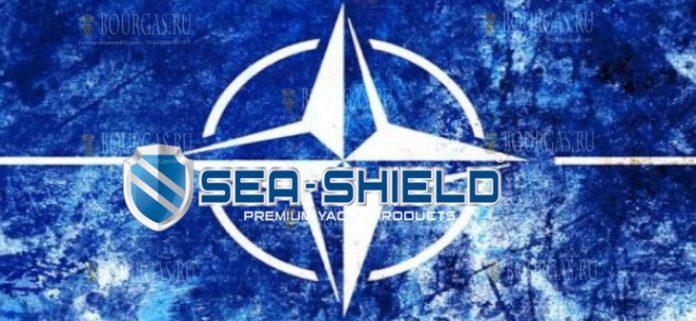 Sea Shield 2019