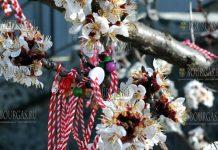 В Хасково на юге Болгарии пришла настоящая весна