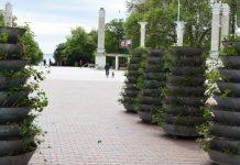 Флористы вышли на работу в центре Варны