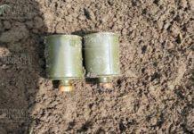 Грибники в Болгарии нашли в местности Манавка две боевые гранаты
