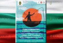 Рыба и рыболовство на южном побережье Черного моря