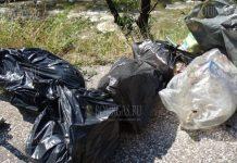 Энтузиасты решили почистить реку Струма