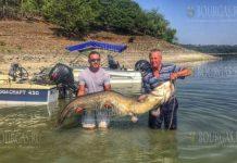 Рыбаки на озере Студен кладенец - поймали 50-килограммового сома