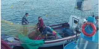 Паламуд пришел на заказ на Ахтопольский рыбный Фест
