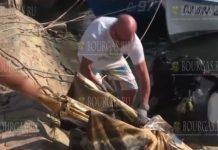 В Болгарии проводят генеральную чистку страны