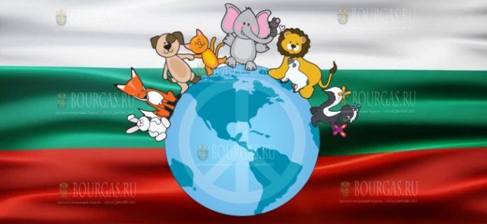 В Болгарии отмечают Всемирный день защиты животных