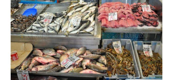 рыба осенью в Болгарии