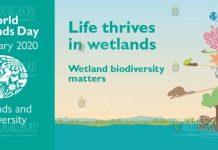 Бургас отмечает Всемирный день водно-болотных угодий