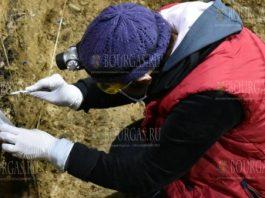 Первые Homo Sapiens в Европе были найдены в Болгарии