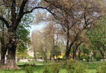 В парке Свети Никола в Софии больше не будет автомобилей