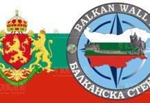 В Болгарии стартовали учения Балканская стена-2020