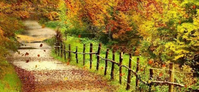 Болгария сентябрь