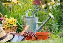 День садовода в Болгарии