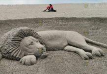 Большой Лев появился на пляже в Бургасе