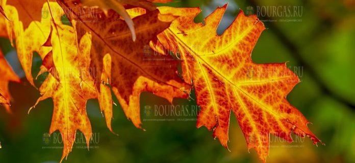 октябрь Болгария