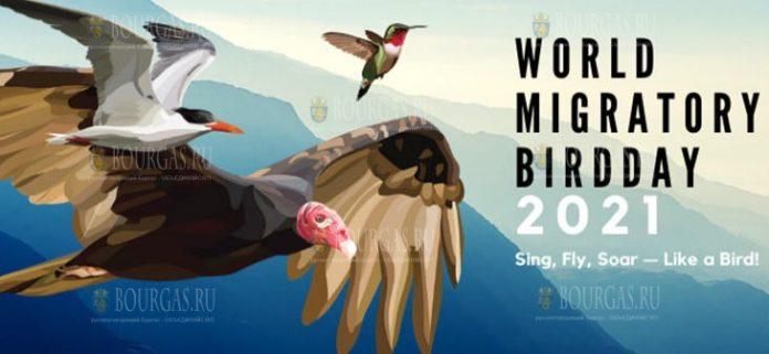 В Болгарии отмечается Всемирный день перелетных птиц